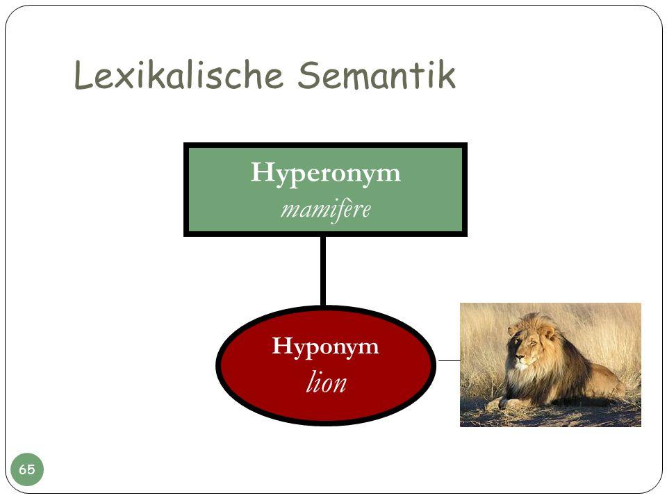 Lexikalische Semantik Hyperonym mamifère Hyponym lion 65