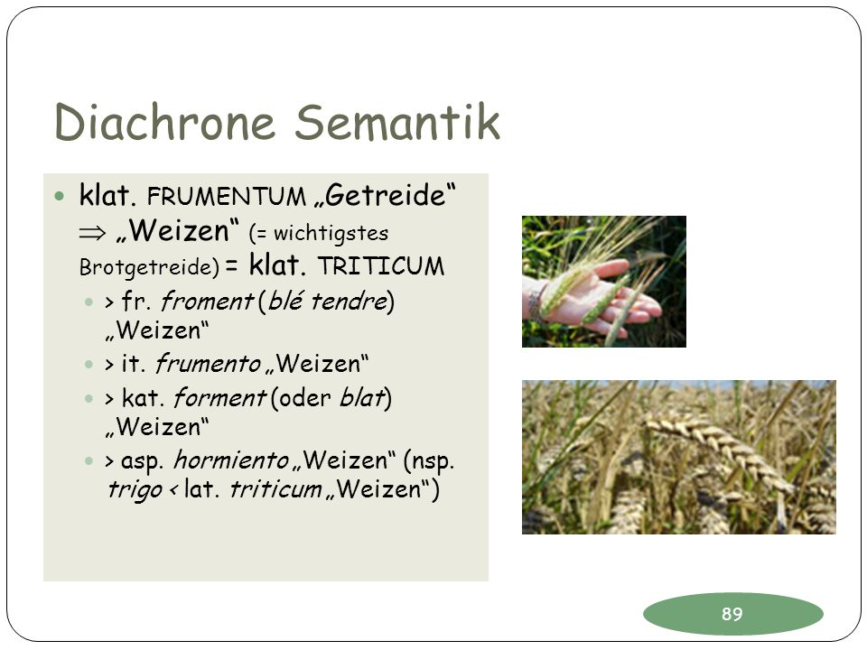Diachrone Semantik klat. FRUMENTUM Getreide Weizen (= wichtigstes Brotgetreide) = klat. TRITICUM > fr. froment (blé tendre) Weizen > it. frumento Weiz