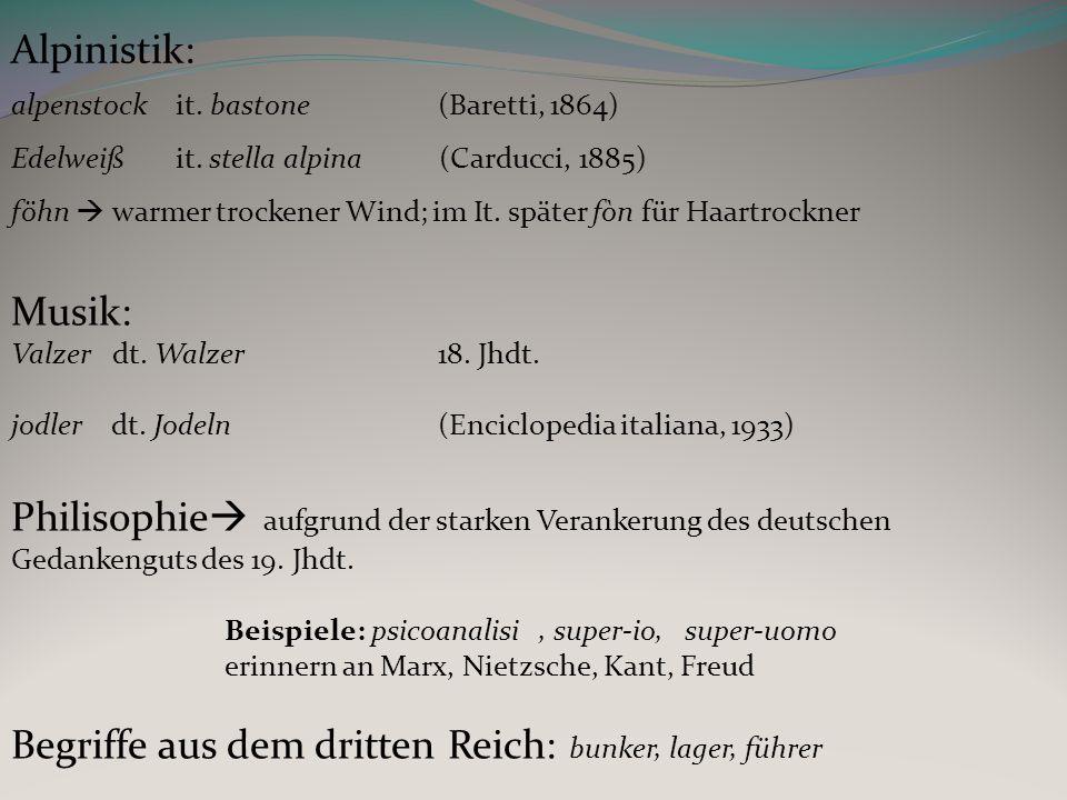 Alpinistik: alpenstock it.bastone (Baretti, 1864) Edelweiß it.