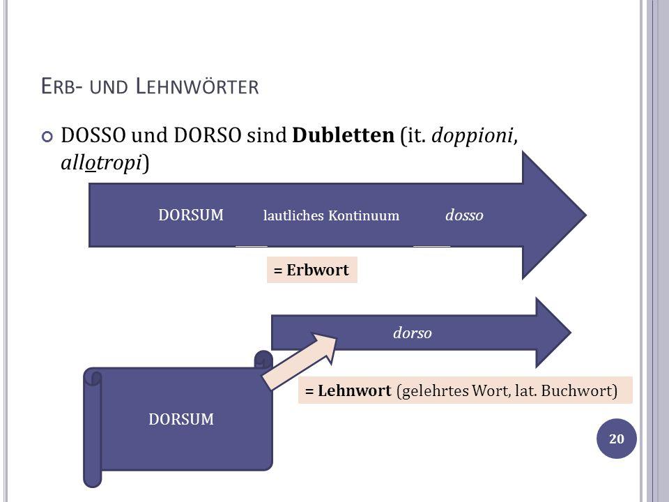 E RB - UND L EHNWÖRTER DOSSO und DORSO sind Dubletten (it. doppioni, allotropi) DORSUM lautliches Kontinuum dosso = Erbwort DORSUM dorso = Lehnwort (g