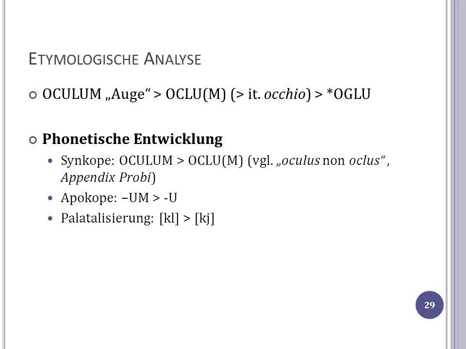 E TYMOLOGISCHE A NALYSE OCULUM Auge > OCLU(M) (> it. occhio) > *OGLU Phonetische Entwicklung Synkope: OCULUM > OCLU(M) (vgl. oculus non oclus, Appendi