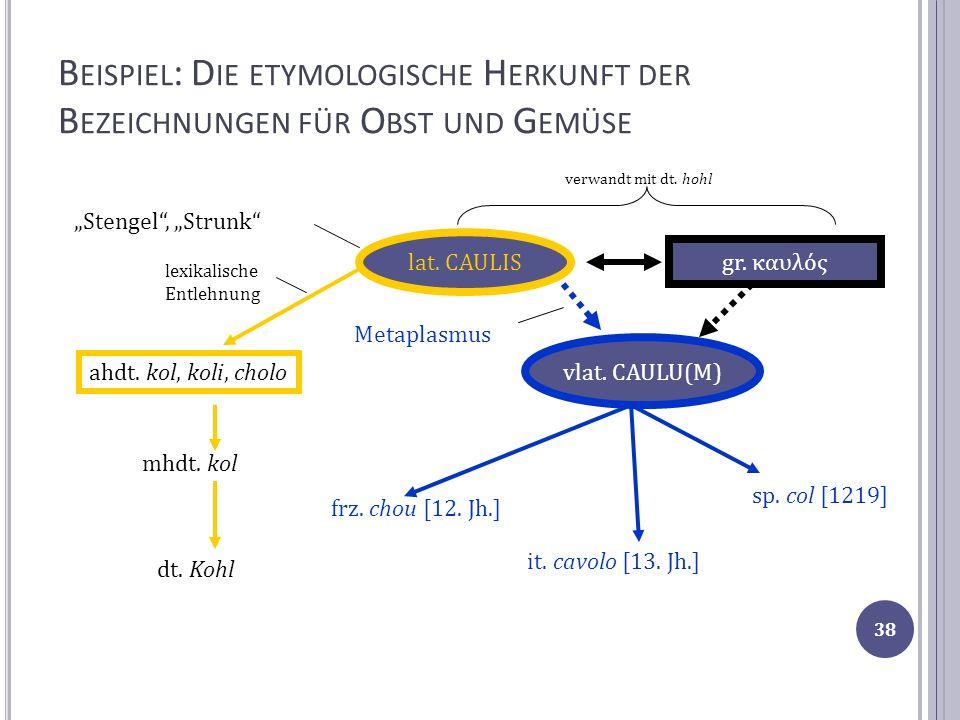 B EISPIEL : D IE ETYMOLOGISCHE H ERKUNFT DER B EZEICHNUNGEN FÜR O BST UND G EMÜSE lat. CAULIS gr. καυλός vlat. CAULU(M) Metaplasmus Stengel, Strunk fr