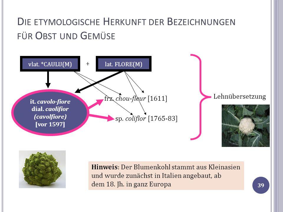 D IE ETYMOLOGISCHE H ERKUNFT DER B EZEICHNUNGEN FÜR O BST UND G EMÜSE frz. chou-fleur [1611] it. cavolo-fiore dial. caolifior (cavolfiore) [vor 1597]
