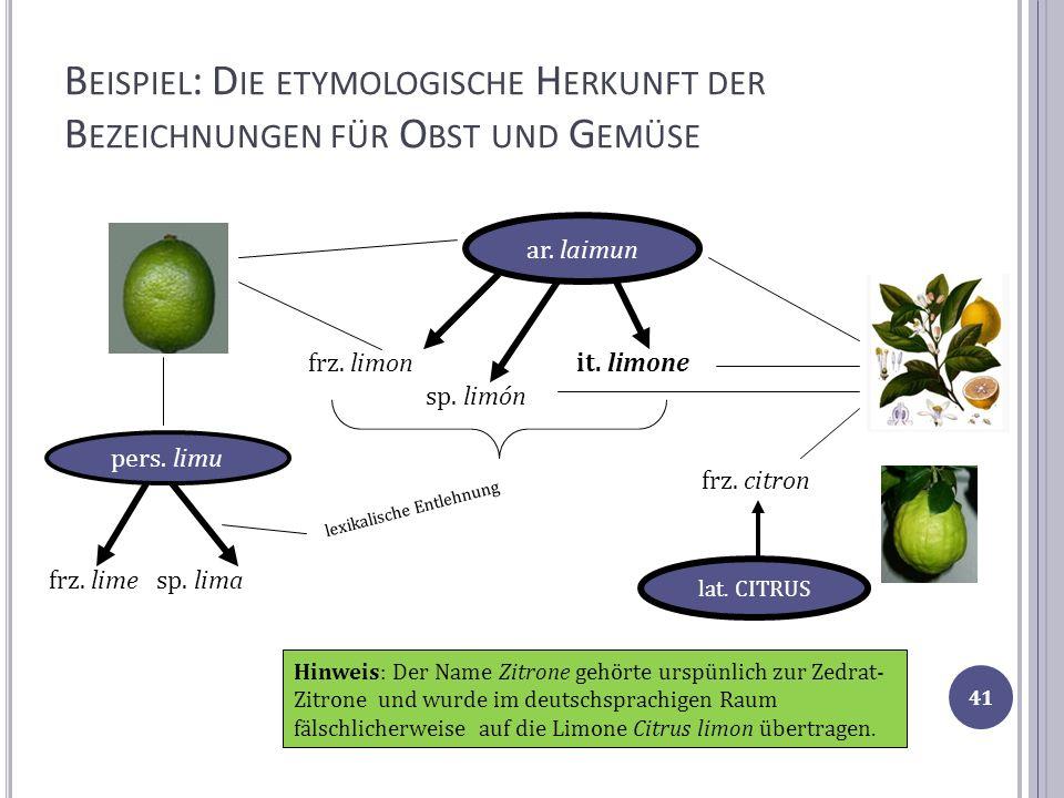 B EISPIEL : D IE ETYMOLOGISCHE H ERKUNFT DER B EZEICHNUNGEN FÜR O BST UND G EMÜSE ar. laimun sp. limón it. limonefrz. limon pers. limu frz. lime sp. l