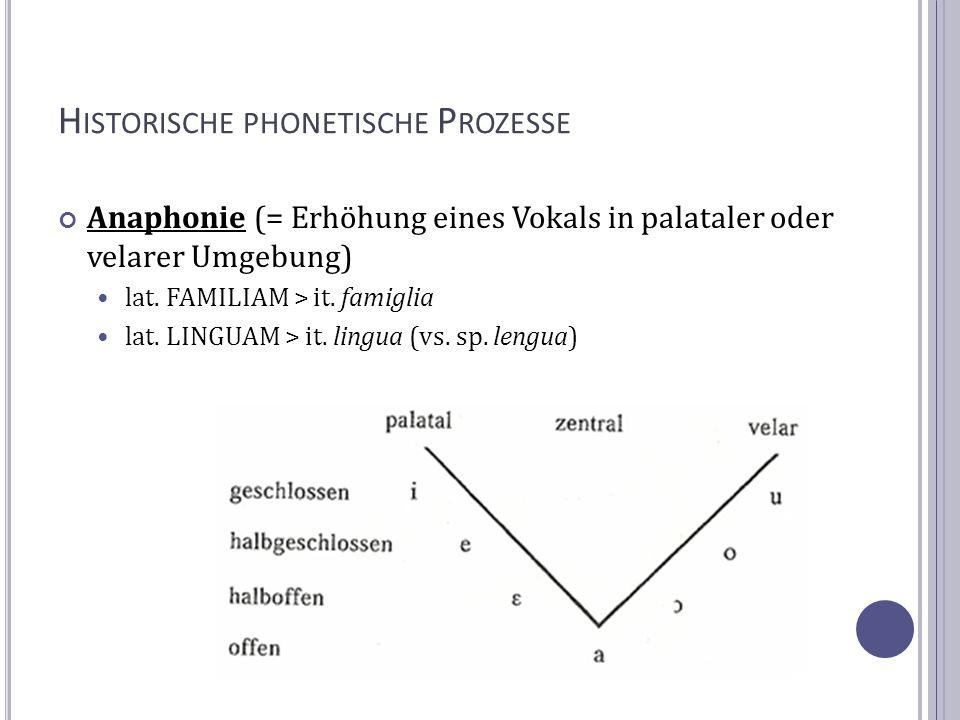 H ISTORISCHE PHONETISCHE P ROZESSE Anaphonie (= Erhöhung eines Vokals in palataler oder velarer Umgebung) lat. FAMILIAM > it. famiglia lat. LINGUAM >