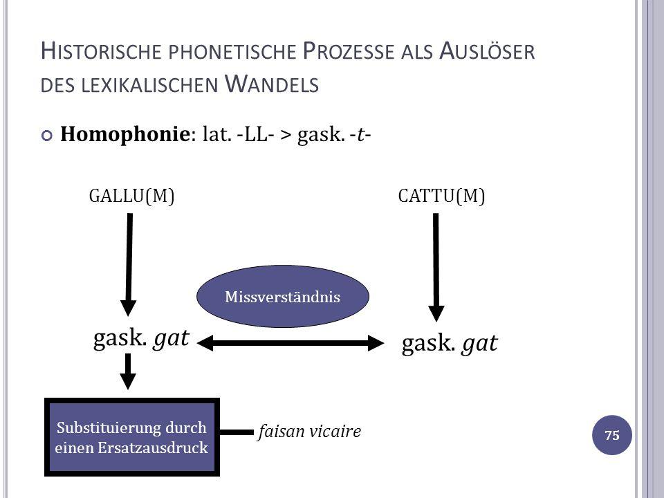 H ISTORISCHE PHONETISCHE P ROZESSE ALS A USLÖSER DES LEXIKALISCHEN W ANDELS Homophonie: lat. -LL- > gask. -t- GALLU(M) CATTU(M) gask. gat Missverständ