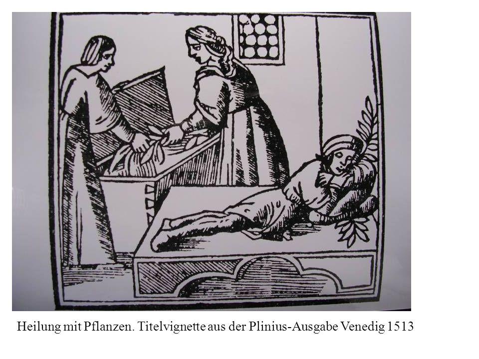 Heilung mit Pflanzen. Titelvignette aus der Plinius-Ausgabe Venedig 1513