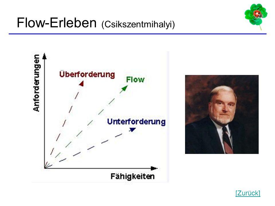 25 Flow-Erleben (Csikszentmihalyi) [Zurück]