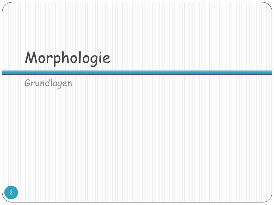 Morphologie Grundlagen 2