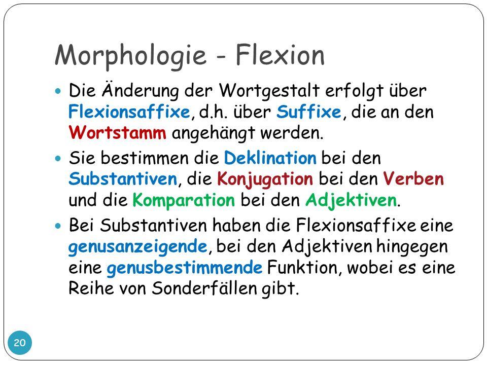 Morphologie - Flexion 20 Die Änderung der Wortgestalt erfolgt über Flexionsaffixe, d.h. über Suffixe, die an den Wortstamm angehängt werden. Sie besti