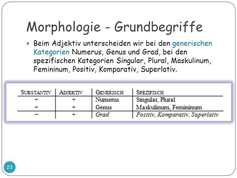 Morphologie - Grundbegriffe 23 Beim Adjektiv unterscheiden wir bei den generischen Kategorien Numerus, Genus und Grad, bei den spezifischen Kategorien