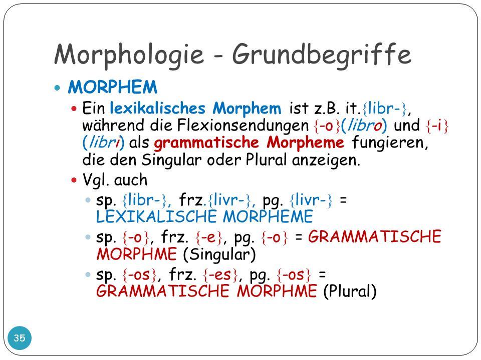 Morphologie - Grundbegriffe 35 MORPHEM Ein lexikalisches Morphem ist z.B. it. libr-, während die Flexionsendungen -o (libro) und -i (libri) als gramma