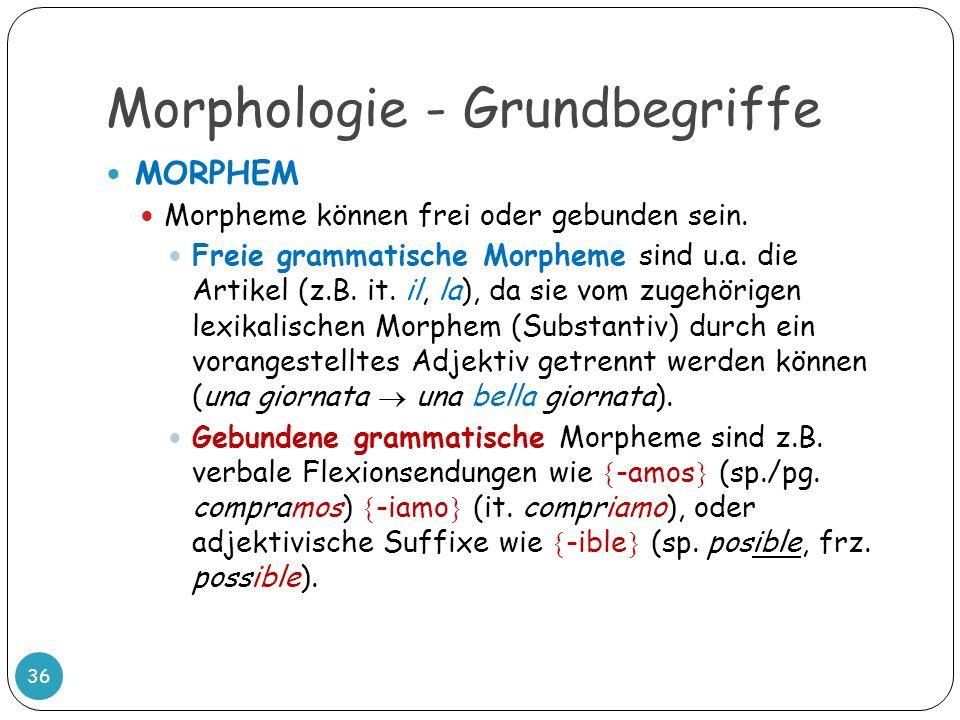 Morphologie - Grundbegriffe 36 MORPHEM Morpheme können frei oder gebunden sein. Freie grammatische Morpheme sind u.a. die Artikel (z.B. it. il, la), d