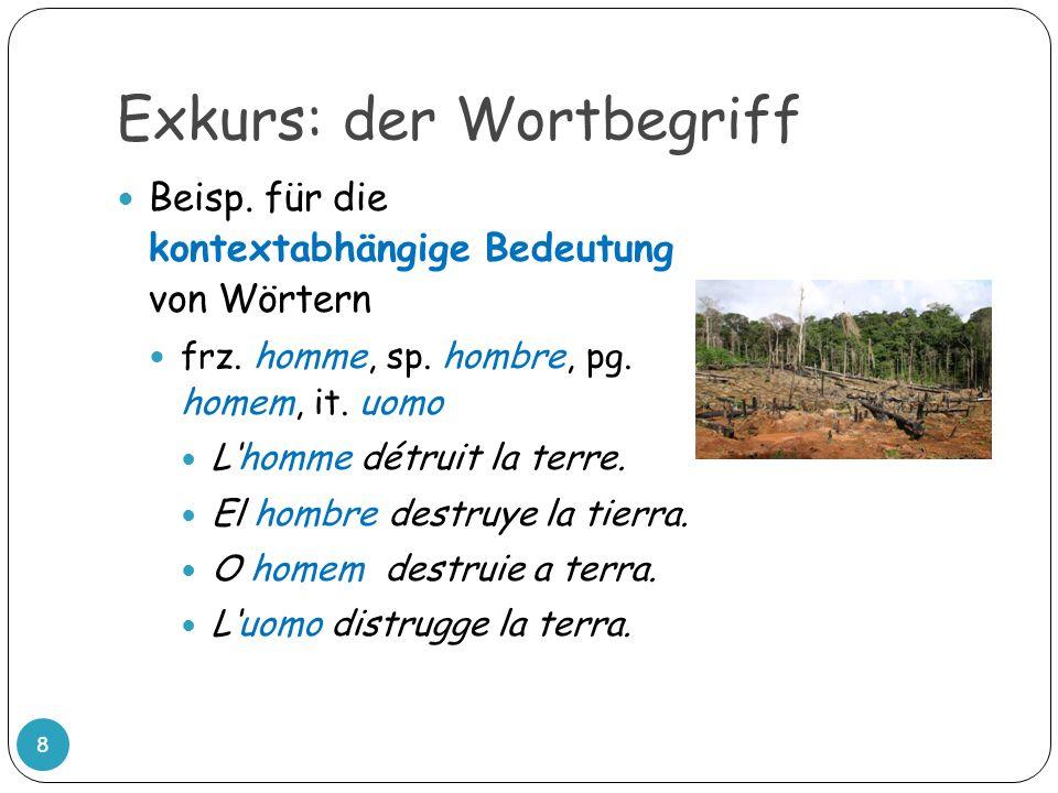 Exkurs: der Wortbegriff 8 Beisp. für die kontextabhängige Bedeutung von Wörtern frz. homme, sp. hombre, pg. homem, it. uomo Lhomme détruit la terre. E