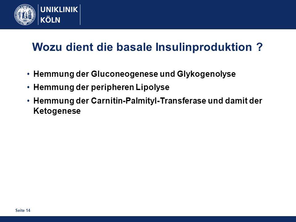 Seite 14 Wozu dient die basale Insulinproduktion ? Hemmung der Gluconeogenese und Glykogenolyse Hemmung der peripheren Lipolyse Hemmung der Carnitin-P