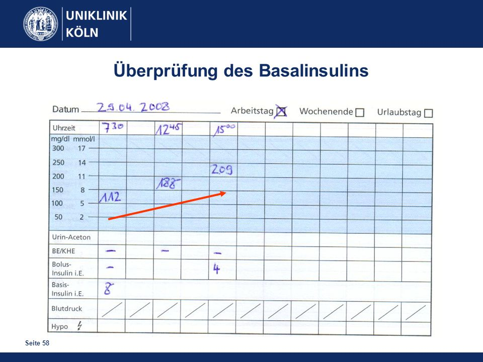 Seite 58 Überprüfung des Basalinsulins