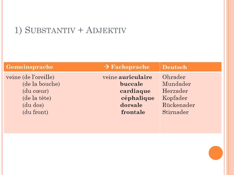 1) S UBSTANTIV + A DJEKTIV Gemeinsprache FachspracheDeutsch veine (de loreille) veine auriculaire (de la bouche) buccale (du cœur) cardiaque (de la tê