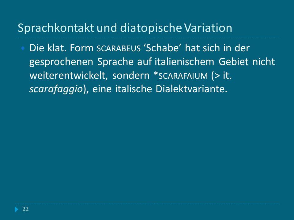 Sprachkontakt und diatopische Variation 22 Die klat. Form SCARABEUS Schabe hat sich in der gesprochenen Sprache auf italienischem Gebiet nicht weitere