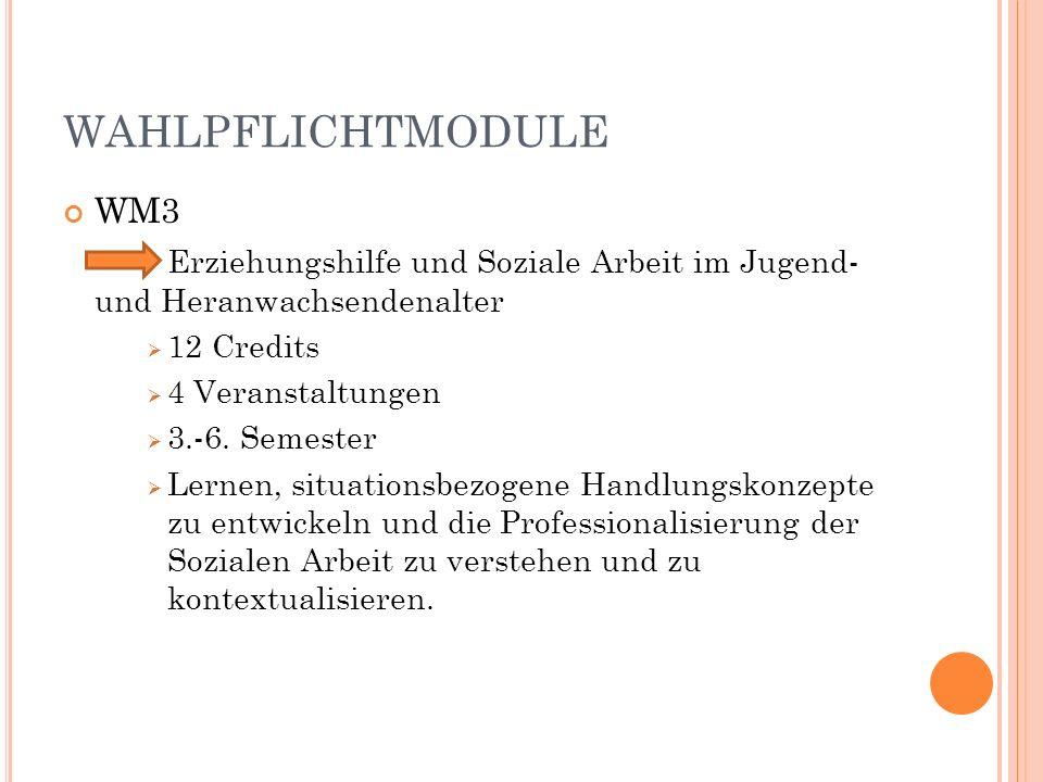 WAHLPFLICHTMODULE WM3 Erziehungshilfe und Soziale Arbeit im Jugend- und Heranwachsendenalter 12 Credits 4 Veranstaltungen 3.-6.