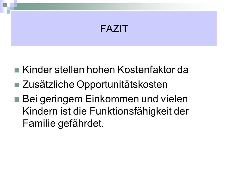FAZIT Kinder stellen hohen Kostenfaktor da Zusätzliche Opportunitätskosten Bei geringem Einkommen und vielen Kindern ist die Funktionsfähigkeit der Fa