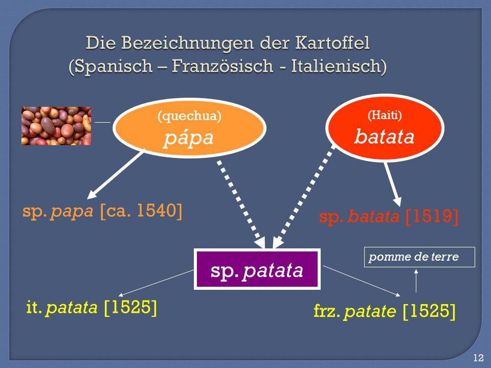 12 Die Bezeichnungen der Kartoffel (Spanisch – Französisch - Italienisch) (quechua) pápa sp. papa [ca. 1540] (Haiti) batata sp. batata [1519] sp. pata