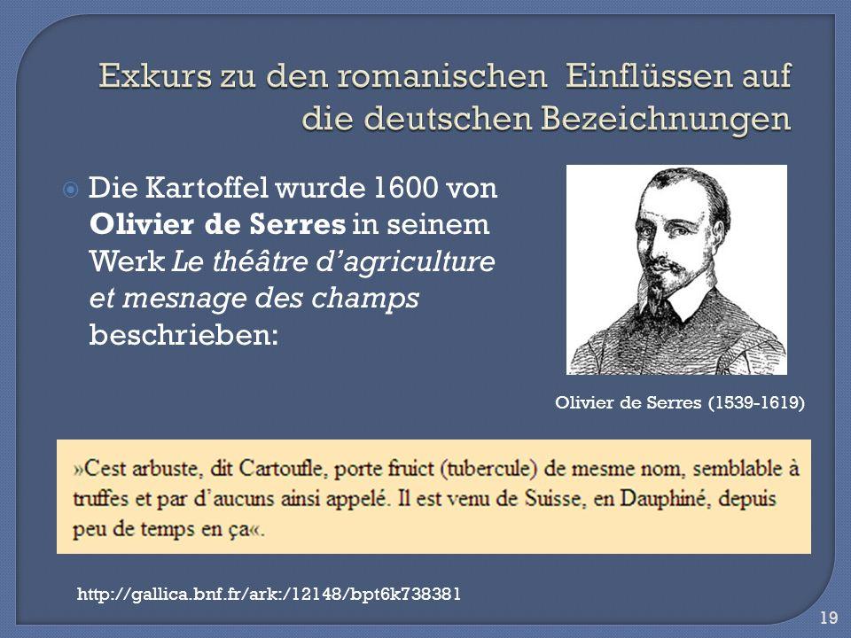Die Kartoffel wurde 1600 von Olivier de Serres in seinem Werk Le théâtre dagriculture et mesnage des champs beschrieben: 19 Olivier de Serres (1539-16