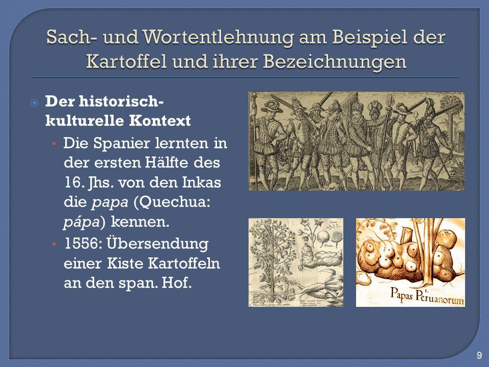 Der historisch- kulturelle Kontext Die Spanier lernten in der ersten Hälfte des 16. Jhs. von den Inkas die papa (Quechua: pápa) kennen. 1556: Übersend