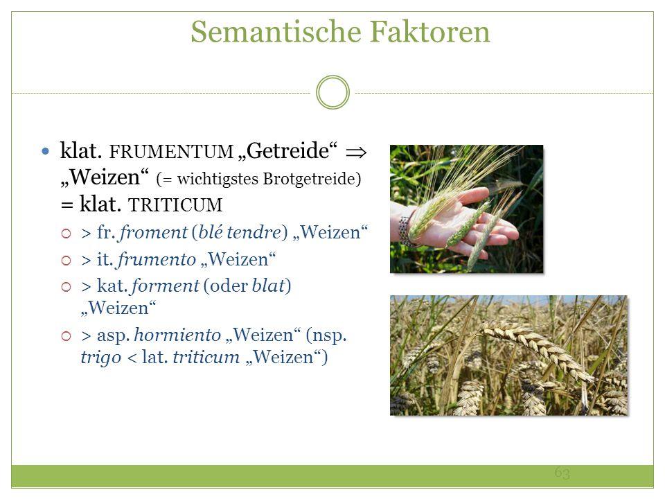 63 Semantische Faktoren klat. FRUMENTUM Getreide Weizen (= wichtigstes Brotgetreide) = klat. TRITICUM > fr. froment (blé tendre) Weizen > it. frumento