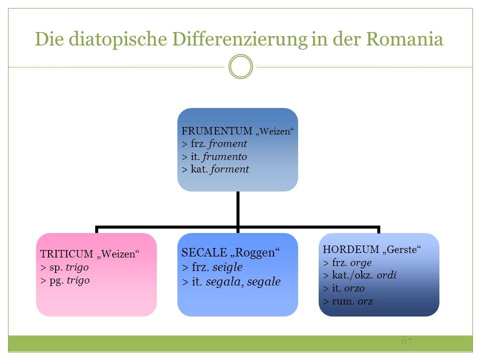 67 Die diatopische Differenzierung in der Romania FRUMENTUM Weizen > frz. froment > it. frumento > kat. forment TRITICUM Weizen > sp. trigo > pg. trig