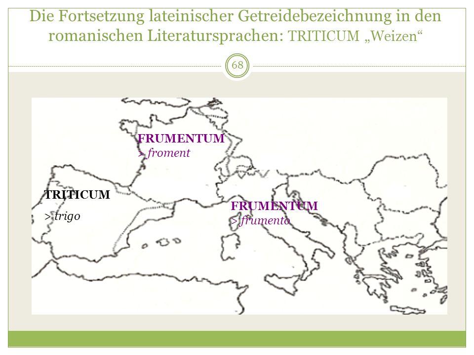 68 Die Fortsetzung lateinischer Getreidebezeichnung in den romanischen Literatursprachen: TRITICUM Weizen TRITICUM > trigo FRUMENTUM > froment FRUMENT