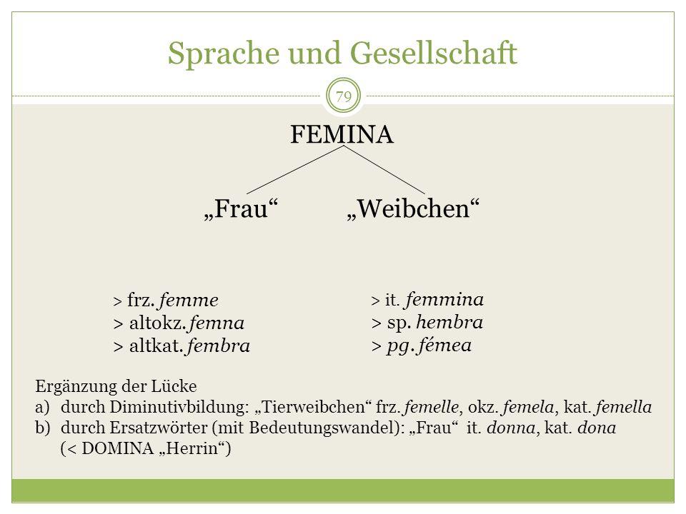 79 Sprache und Gesellschaft FEMINA Frau Weibchen > frz. femme > altokz. femna > altkat. fembra > it. femmina > sp. hembra > pg. fémea Ergänzung der Lü
