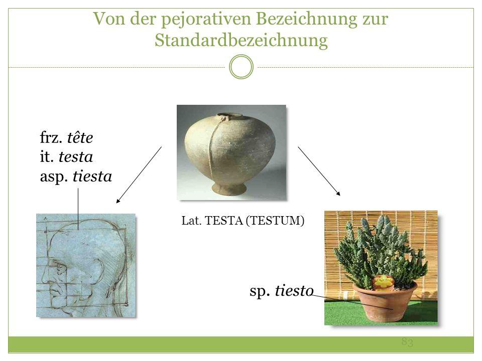 83 Von der pejorativen Bezeichnung zur Standardbezeichnung Lat. TESTA (TESTUM) sp. tiesto frz. tête it. testa asp. tiesta