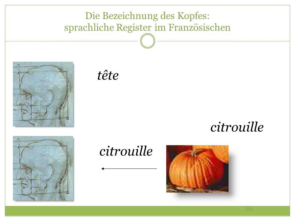 86 Die Bezeichnung des Kopfes: sprachliche Register im Französischen tête citrouille