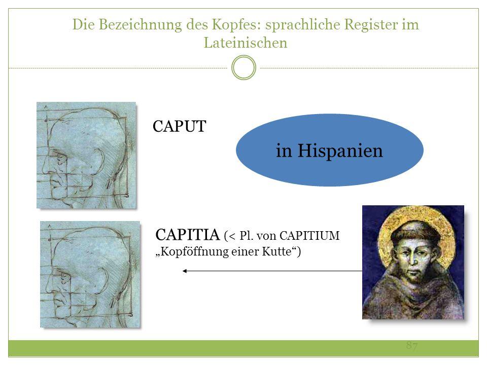 87 Die Bezeichnung des Kopfes: sprachliche Register im Lateinischen CAPUT CAPITIA (< Pl. von CAPITIUM Kopföffnung einer Kutte) in Hispanien