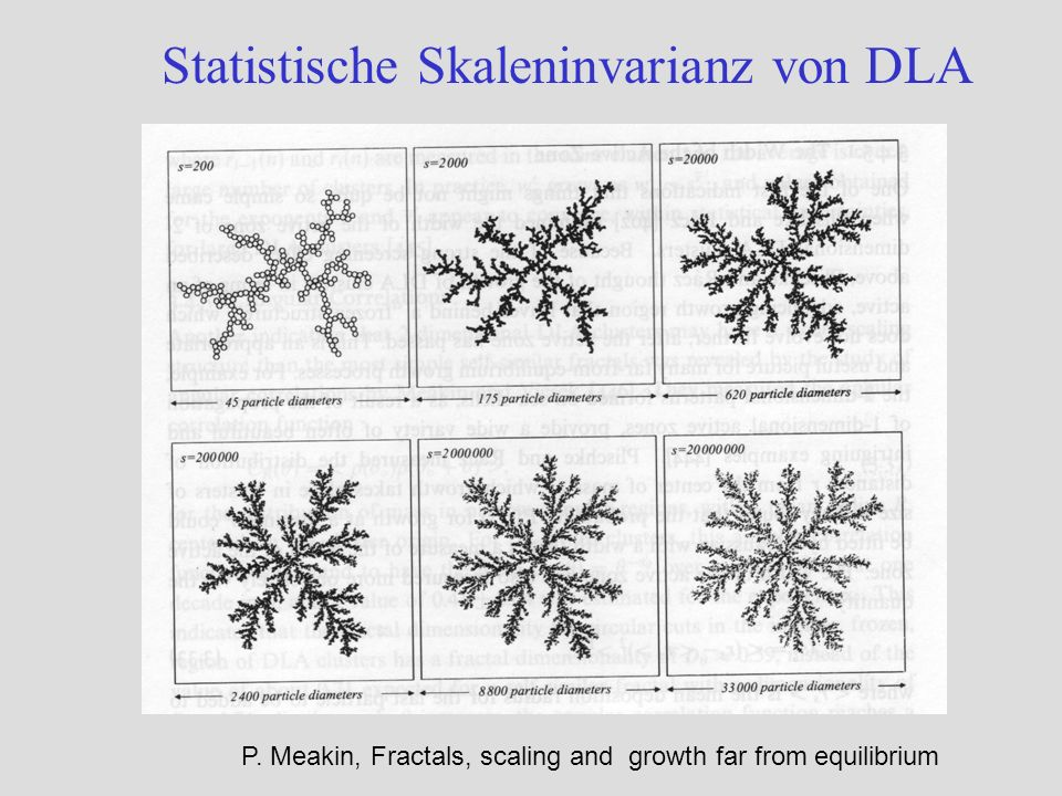 Statistische Skaleninvarianz von DLA P. Meakin, Fractals, scaling and growth far from equilibrium