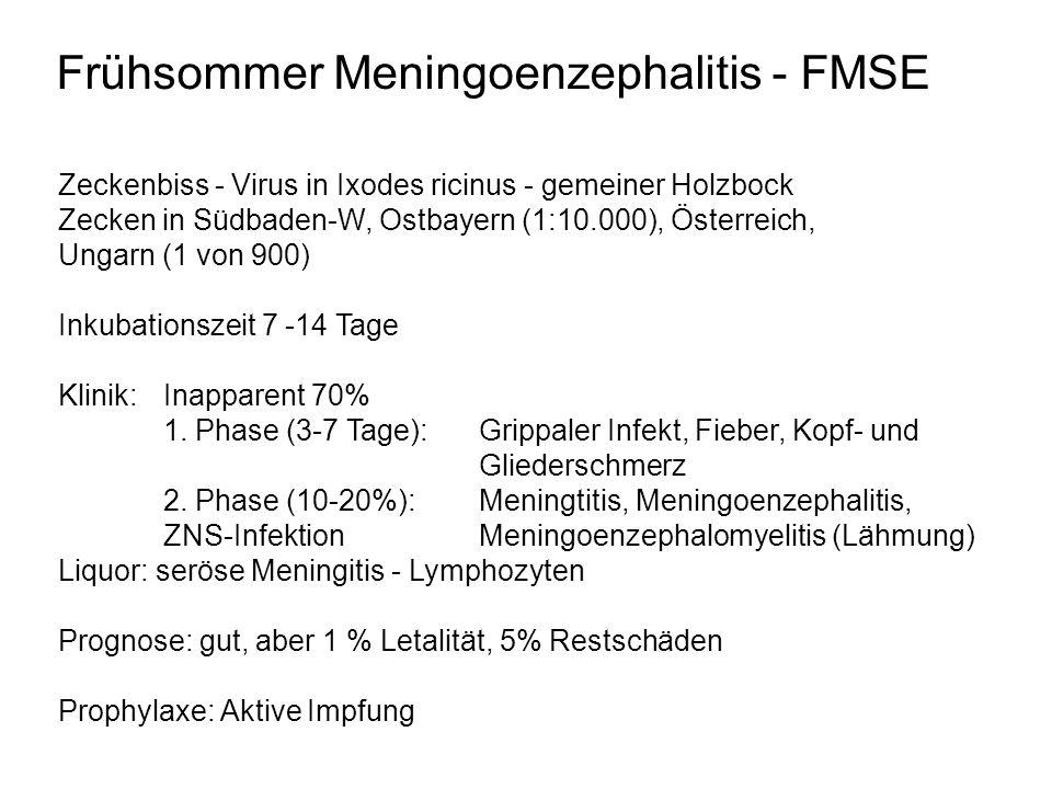 Frühsommer Meningoenzephalitis - FMSE Zeckenbiss - Virus in Ixodes ricinus - gemeiner Holzbock Zecken in Südbaden-W, Ostbayern (1:10.000), Österreich,