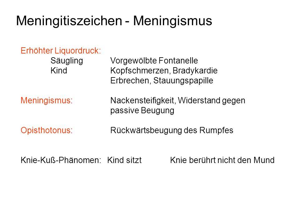 Meningitiszeichen - Meningismus Erhöhter Liquordruck: Säugling Vorgewölbte Fontanelle KindKopfschmerzen, Bradykardie Erbrechen, Stauungspapille Mening