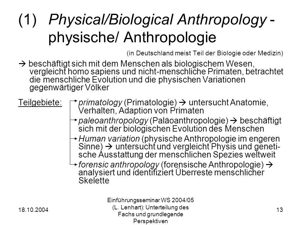 18.10.2004 Einführungsseminar WS 2004/05 (L. Lenhart): Unterteilung des Fachs und grundlegende Perspektiven 13 (1)Physical/Biological Anthropology - p