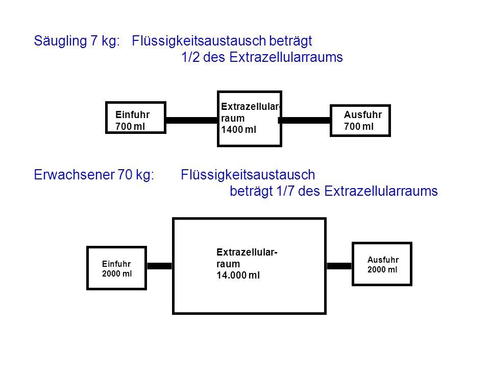 Säugling 7 kg: Flüssigkeitsaustausch beträgt 1/2 des Extrazellularraums Einfuhr 700 ml Ausfuhr 700 ml Extrazellular- raum 1400 ml Erwachsener 70 kg: F