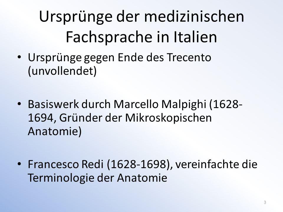 Ursprünge der medizinischen Fachsprache in Italien Ursprünge gegen Ende des Trecento (unvollendet) Basiswerk durch Marcello Malpighi (1628- 1694, Gründer der Mikroskopischen Anatomie) Francesco Redi (1628-1698), vereinfachte die Terminologie der Anatomie 3