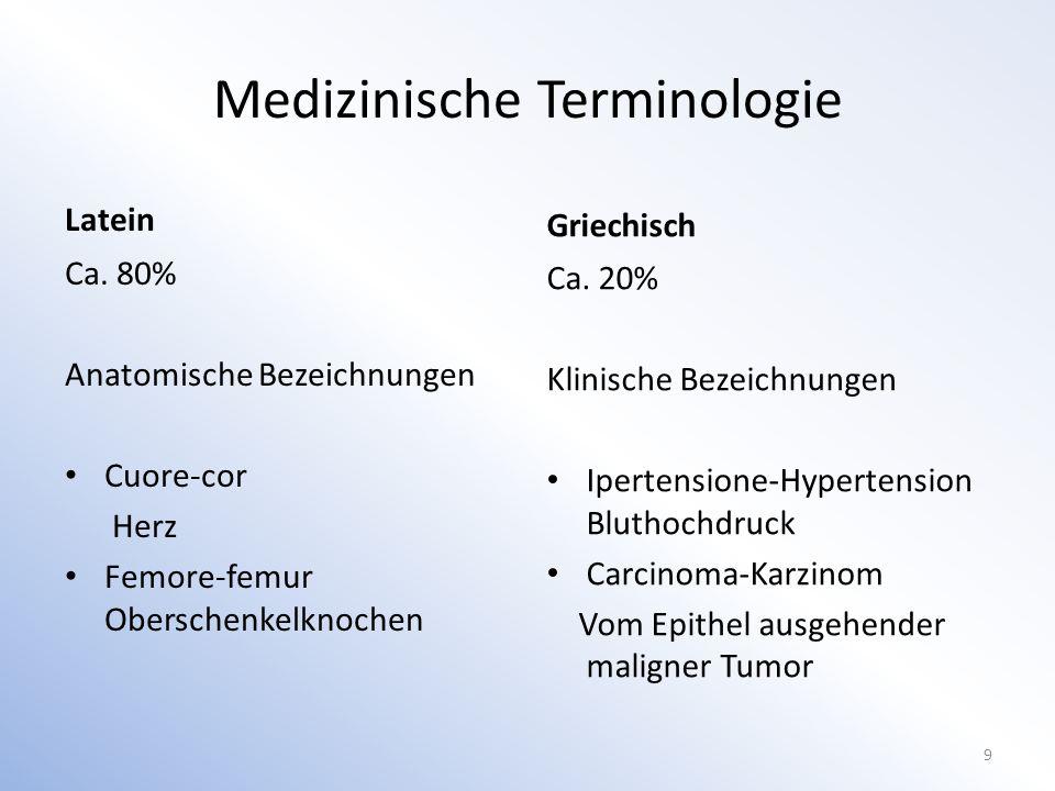 Terminusbildung Attribute Komposition mehrerer Wortelemente Etymologie 10