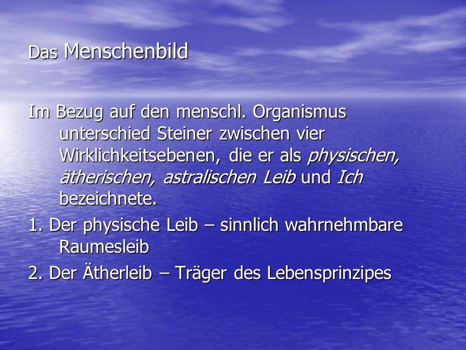 Das Menschenbild Im Bezug auf den menschl. Organismus unterschied Steiner zwischen vier Wirklichkeitsebenen, die er als physischen, ätherischen, astra