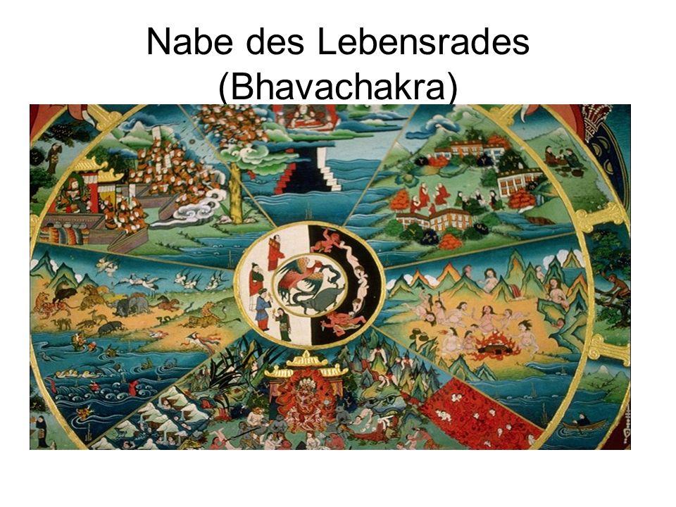 Die medizin-philosophische Grundlagen Die tibetische Medizin ordnet die drei Gifte den drei Säften Wind (Bewegung des Körpers) Galle (Wärme des Körpers) Schleim (Flüssigkeit des Körpers) deren harmonisches Gleichgewicht über Gesundheit und Krankheit entscheidet