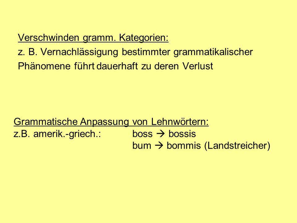 Verschwinden gramm. Kategorien: z. B. Vernachlässigung bestimmter grammatikalischer Phänomene führt dauerhaft zu deren Verlust Grammatische Anpassung