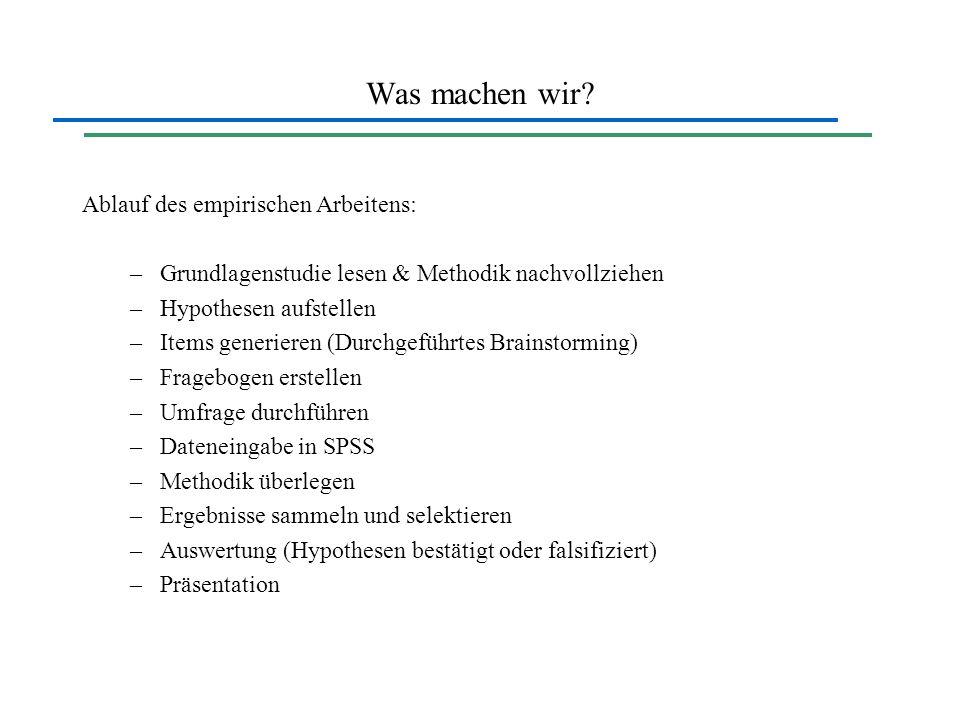 Was machen wir? Ablauf des empirischen Arbeitens: –Grundlagenstudie lesen & Methodik nachvollziehen –Hypothesen aufstellen –Items generieren (Durchgef