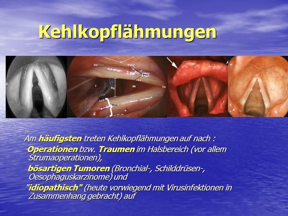 Kehlkopflähmungen Kehlkopflähmungen Am häufigsten treten Kehlkopflähmungen auf nach : Operationen bzw. Traumen im Halsbereich (vor allem Strumaoperati