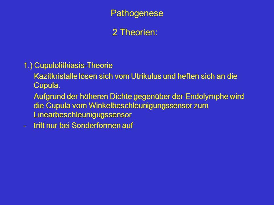 Pathogenese 1.) Cupulolithiasis-Theorie Kazitkristalle lösen sich vom Utrikulus und heften sich an die Cupula. Aufgrund der höheren Dichte gegenüber d