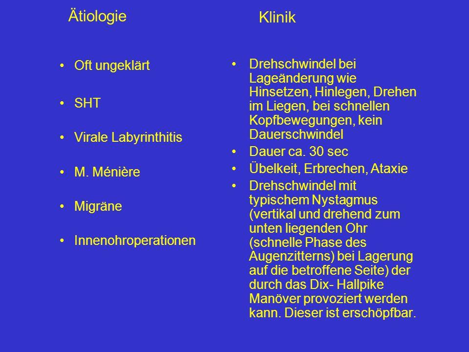 Diagnostik Genaue Schwindelanamnese, Tagebuch
