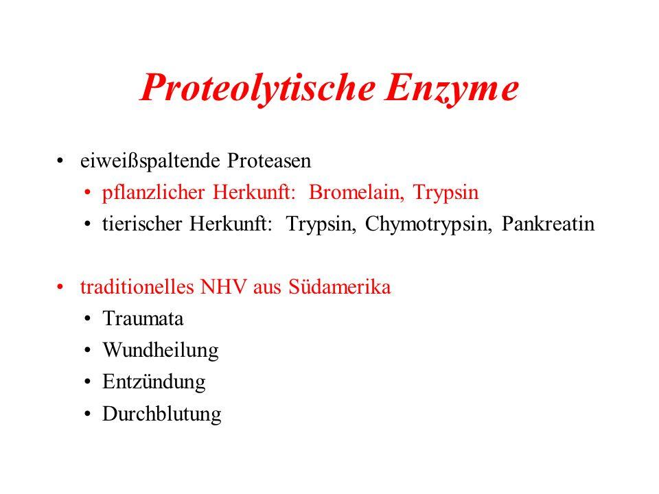 Proteolytische Enzyme eiweißspaltende Proteasen pflanzlicher Herkunft: Bromelain, Trypsin tierischer Herkunft: Trypsin, Chymotrypsin, Pankreatin tradi
