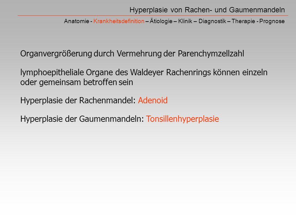 Hyperplasie von Rachen- und Gaumenmandeln Anatomie - Krankheitsdefinition – Ätiologie – Klinik – Diagnostik – Therapie - Prognose Organvergrößerung durch Vermehrung der Parenchymzellzahl lymphoepitheliale Organe des Waldeyer Rachenrings können einzeln oder gemeinsam betroffen sein Hyperplasie der Rachenmandel: Adenoid Hyperplasie der Gaumenmandeln: Tonsillenhyperplasie